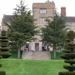 House through Trees 005