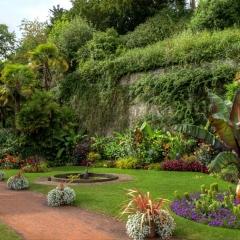 1_DSD3650_1_2 Garden