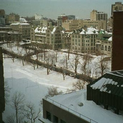 Montreal Snow 1