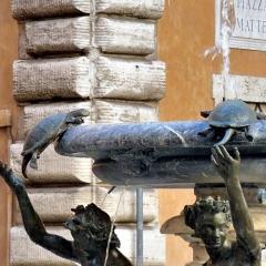 16 Piazza Mattei P1010339