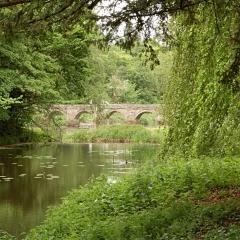 G-River Bridge_8084