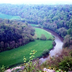 Herefordshire  Symonds Yat 0014