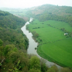 Herefordshire  Symonds Yat 0015