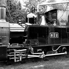 DSD1947